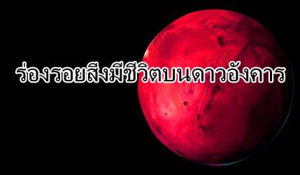 ร่องรอยสิ่งมีชีวิตบนดาวอังคาร